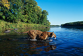 TGR 01 RK0102 46