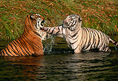 TGR 01 RK0110 15
