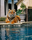 TGR 01 RK0460 07