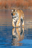 TGR 02 KH0014 01