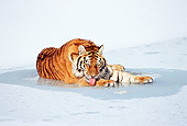TGR 02 LS0003 01