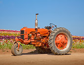 TRA 01 RK0174 01
