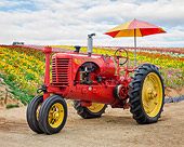 TRA 01 RK0364 01