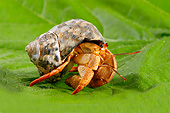 UWC 01 AC0003 01