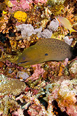 UWC 01 JM0040 01