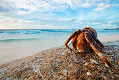UWC 01 MH0007 01
