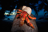 UWC 01 MH0010 01