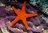 UWC 01 WF0044 01