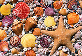 UWC 01 GR0001 01