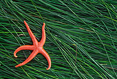 UWC 01 JM0005 01