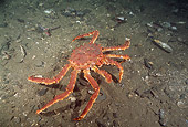 UWC 01 JM0014 01