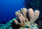 UWC 01 JM0025 01