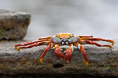 UWC 01 NE0001 01