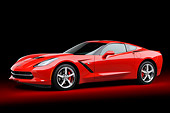 VET 01 BK0039 01