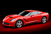 VET 01 BK0041 01