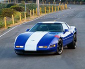 VET 01 RK0114 03