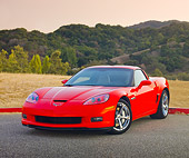 VET 01 RK0931 01