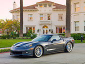 VET 01 RK0942 01