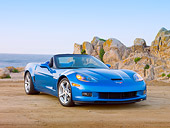 VET 01 RK0949 01