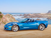 VET 01 RK0953 01