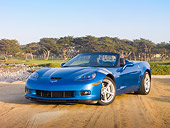 VET 01 RK0954 01
