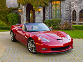 VET 01 RK0989 01