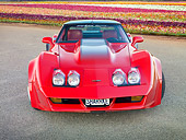 VET 01 RK1022 01