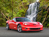 VET 01 RK1035 01