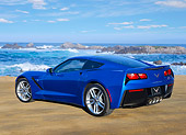 VET 01 RK1096 01