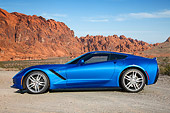VET 01 RK1097 01