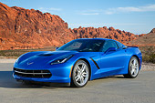 VET 01 RK1098 01