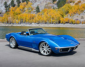 VET 01 RK1100 01