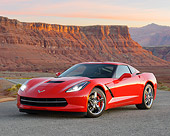 VET 01 RK1107 01