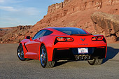 VET 01 RK1108 01
