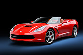 VET 01 RK1111 01