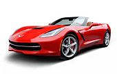 VET 01 RK1113 01