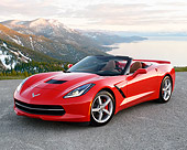 VET 01 RK1121 01