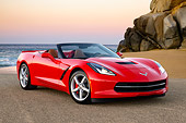 VET 01 RK1122 01