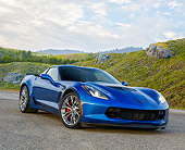 VET 01 RK1128 01