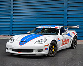 VET 01 RK1133 01