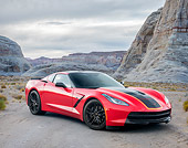 VET 01 RK1143 01