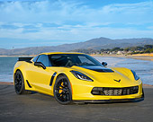 VET 01 RK1144 01