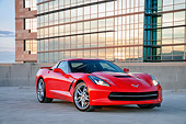 VET 01 RK1146 01