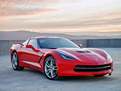 VET 01 RK1149 01