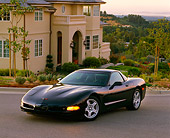VET 01 RK0021 01