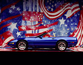VET 01 RK0047 08