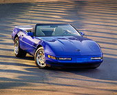 VET 01 RK0053 02