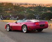 VET 01 RK0133 03