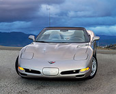 VET 01 RK0196 02