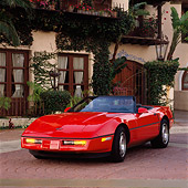 VET 01 RK0271 03